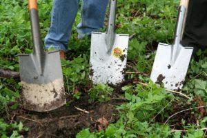 Rückenschmerzen bei Gartenarbeit